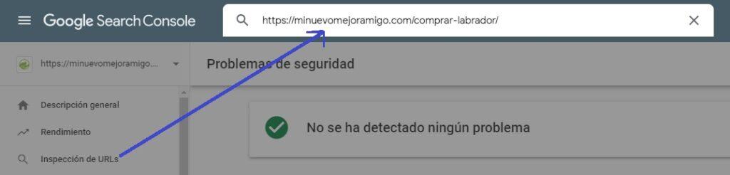 URLs Search Console