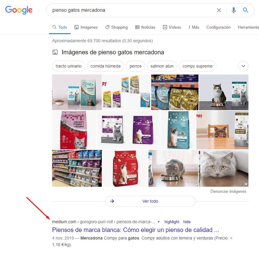 Posicionar contenido en Google a través de Medium